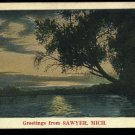 Greetings From Sawyer, Michigan  lake view      NYCE   July 10, 1931