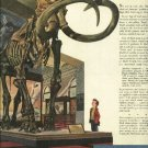 1950 Shell Oil Company magazine ad features the Jeffersonian Mammoth at Natural Museum of History