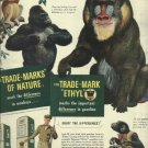 1950 Ad Ethyl Corporation Trade-marks of Nature  Monkeys