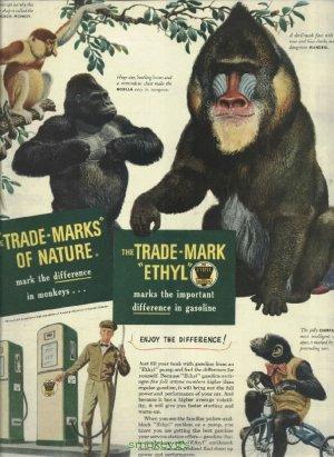1950 Ad Ethyl Corporation Trade-marks of Nature  Monkeys
