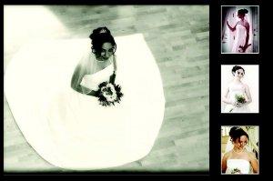 Wedding Templates Sports Templates Holiday Photography Templates