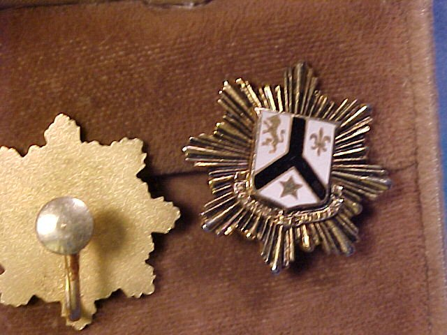 Lion Crown Crest Shield ~ Vintage Screwpost Earrings