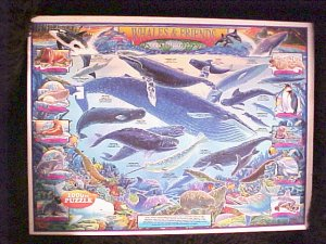 Whales & Friends by White Mountain Puzzles 1000 Pc