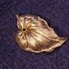 Monet Textured Gold Tone Leaf Costume Pin ~ Free Shipping
