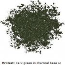 Urban Decay LOOSE PIGMENT dark army green iridescent PROTEST mineral eye shadow powder NEW!