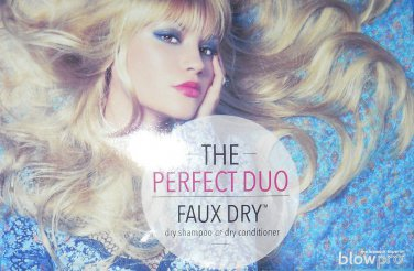 BlowPro Essentials FAUX DRY The Perfect Hair Duo DRY SHAMPOO + DRY CONDITIONER talc-free Blow Pro