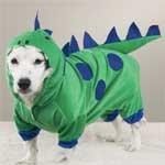 Casual Canine Dogzilla Dinosaur Costumes