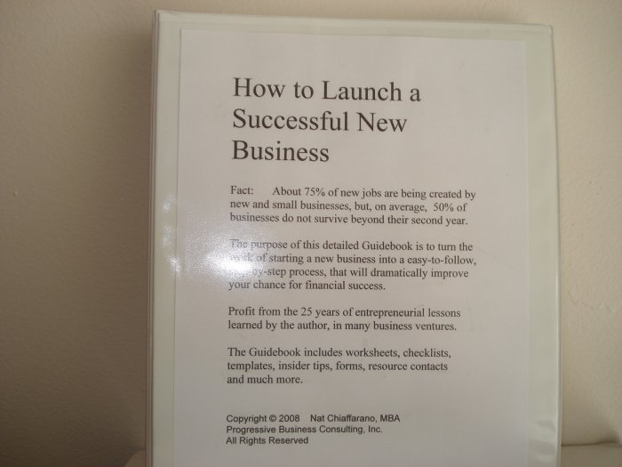 How to Launch and Grow a Winning Start-up Business