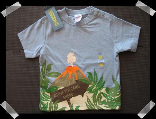 Gymboree Boys T shirt size 12-18 months