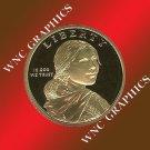 2009 S Sacagawea/Native American Proof Dollar