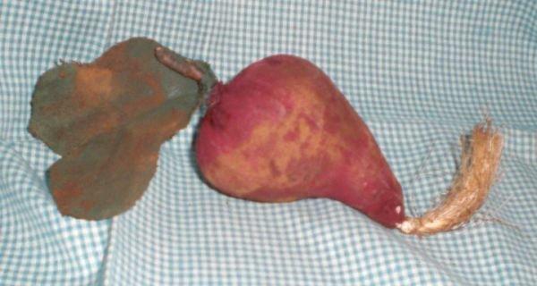 Primitive Folk Art Beet Ornies. Bowl Fillers