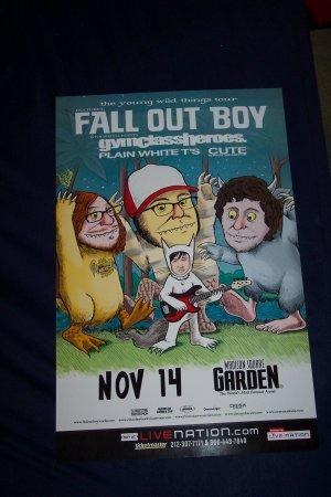 Fall Out Boy Tour Poster