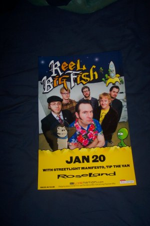 Reel Big Fish Tour Poster