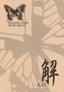 Bleach Yaoi Doujinshi AizenXRenji