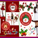 christmas womans costumes santa@ new years@ snow bunny/@gizmo GRT 4 THE HOLIDAY