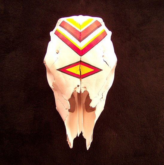 Handcrafted Painted Calf Skull