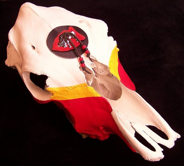 Handcrafted Red and Yellow Cow Skull