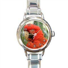 New round Italian Charm Watch Animal Bird Red Cockatoo