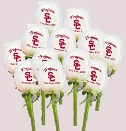 Dozen White Roses with your logo or personalized message