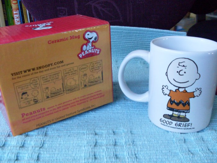 NEW Peanuts Charlie Brown Boxed Mug GOOD GRIEF!