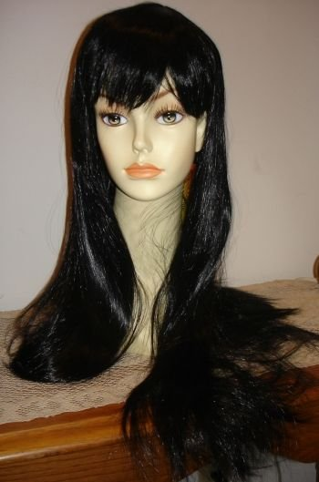 Long Black Straight Wig w/ Bangs~Cosplay~Sexy Witch~Costume