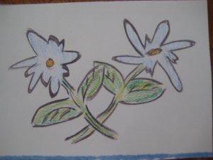 Daisy's Handmade Card