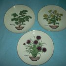 HERB PLATES Set of Three ANDREA BY SADEK Chives Mustard Parsley