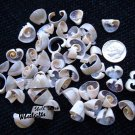2 oz Multi-Cut Ringtop Cowrie Seashells - Craft Shells / Shellcraft - FREE ship!