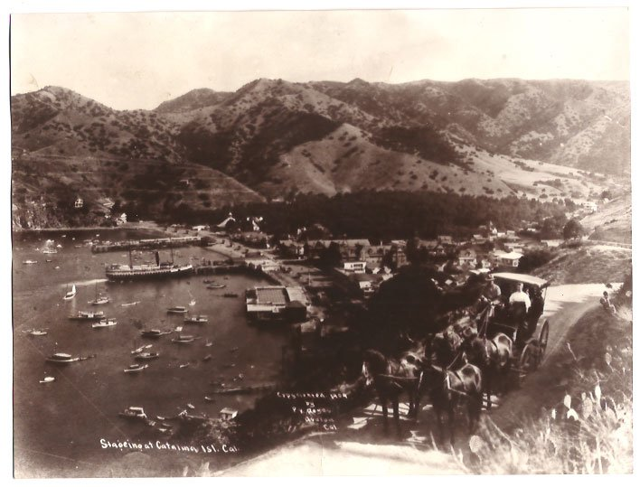 Real Photo of a horse-drawn carriage w/passengers overlooking at Catalina Isl., California, 1909