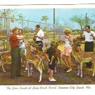 Vintage postcard of the Deer Ranch at Long Beach Resort in Panama City Beach, Florida - mid 1950's