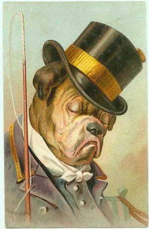 Dressed Bulldog - Top Hat & Whip - 103