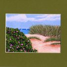 CAPE COD Sailboats Dune Beach Roses Matted Print Ocean, Renee Rutana