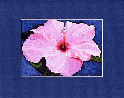 Hawaii HIBISCUS Flower Spring, Pinks, Reds & Violet Blue Botanical Matted Print, Renee Rutana