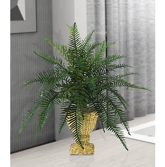 River Fern Silk Plant w/Decorative Basket