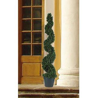 Cedar Sprial Tree 4 ft