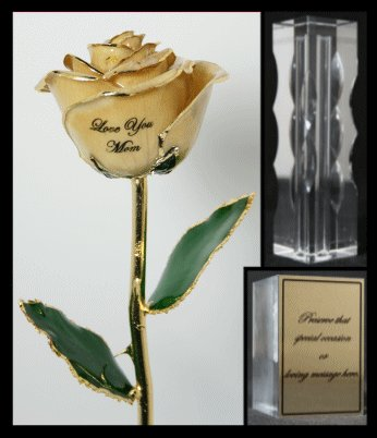 The Mother's Day Rose