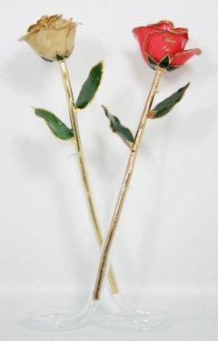 """The """"I Do"""" Roses"""
