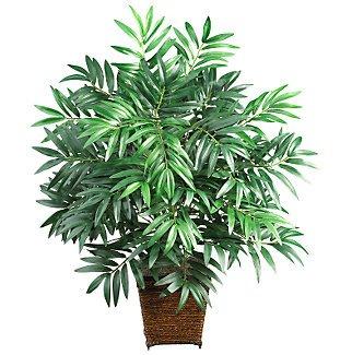 Bamboo Palm w/Wood Wicker Basket Silk Plant