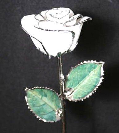 "11 1/2"" Diamond White/Silver Rose"