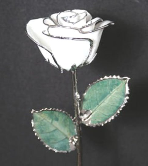 "Anniversary Roses - (2) 11"" Diamond White/Silver with Vase"