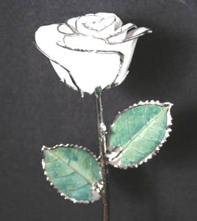 """Trio of 11 1/2"""" Diamond White/Silver Roses"""