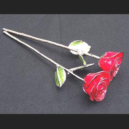 "Anniversary Platinum/Red Roses (2) 11"" with Vase"