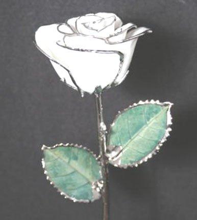 "Anniversary Roses (2) - 11"" Diamond White/Platinum w/ Vase"
