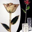 """The 11"""" 50th Anniversary Rose"""