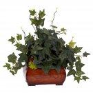 Puff Ivy Silk Plant