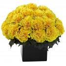Yellow Carnation Arrangement w/Vase