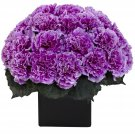 Purple Carnation Arrangement w/Vase