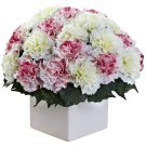 Mauve White Carnation Arrangement w/Vase