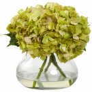 Green Large Blooming Hydrangea w/Vase