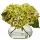 Green Blooming Hydrangea w/Vase